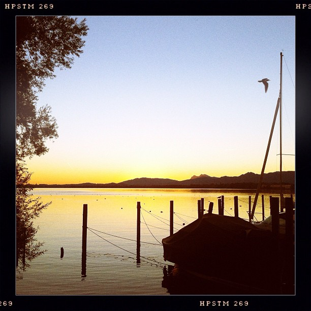 am Chiemsee XII
